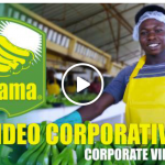 Video Corporativo Banama, SRL