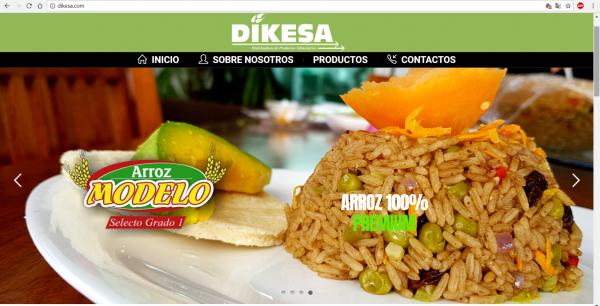 Diseño y Programación DIKESA.COM
