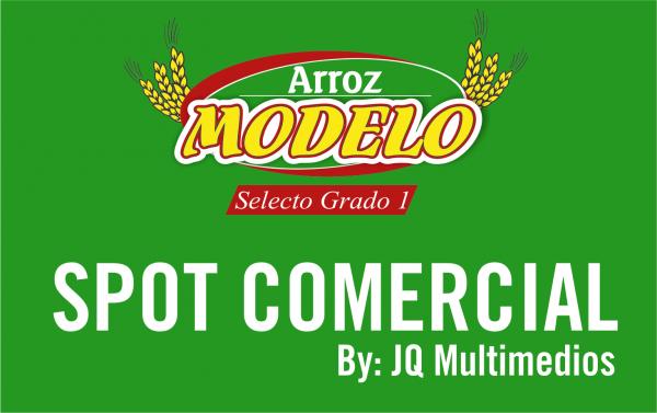 SPOT COMERCIAL ARROZ MODELO